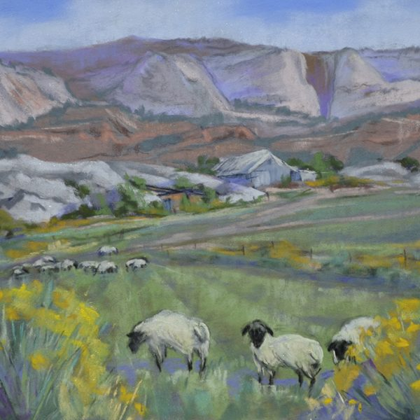 Ford_Patricia_Rose_BaBa_Sheep