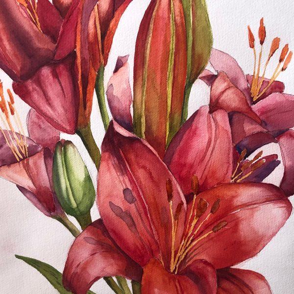 Ian-Cooke-Fiery-Lillies-WEB