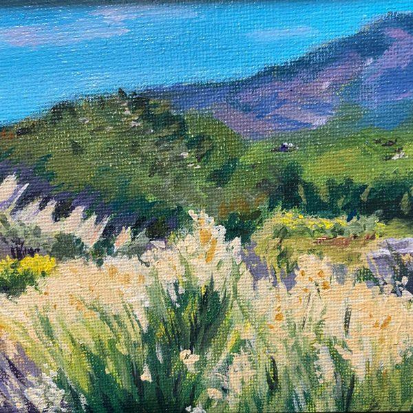 Janis-Buller-Blooming-Desert-WEB