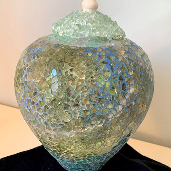 Kelley Havens Earth under Glass